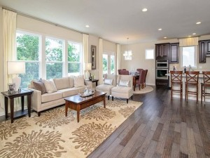 Centex Homes - Meadows Edge